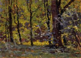 Bosznay István - Napfényes erdő