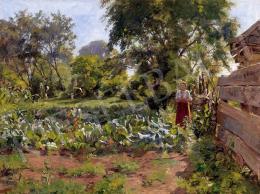 Nádler, Róbert - In the garden