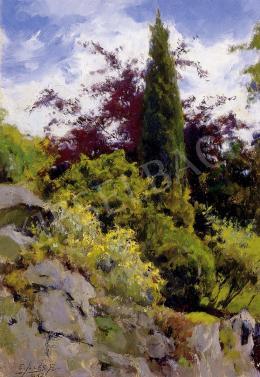 Edvi Illés, Aladár - Landscape