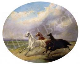 Ismeretlen festő, 19. század vége - Vágtázó lovak