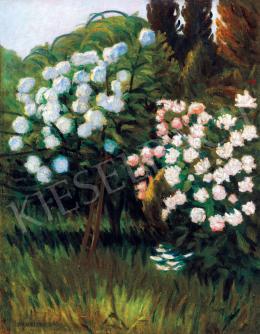 Maticska, Jenő - Garden in Nagybánya (Rose Bushes)