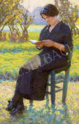Poll Hugó - Napsütötte kertben olvasó hölgy