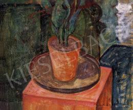 Gábor Móric - Fikusz vörös cserépben