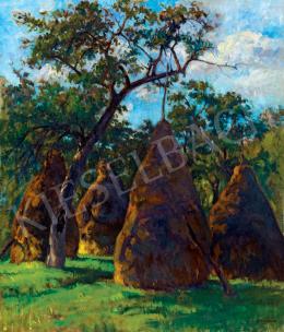 Krizsán János - Fények a kertben (Nagybánya) (1907 körül)