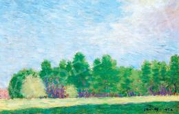 Vaszary János - Napfényes erdőszéle (1909)
