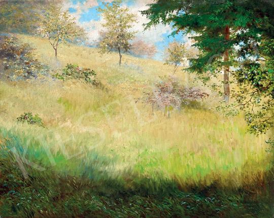 Hegedüs, László - Impressionistic Landscape | 47th Autumn Sale auction / 48 Item
