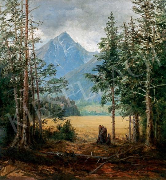 Telepy Károly - Tátrai táj (Koscielec) | 47. őszi aukció aukció / 77 tétel