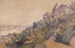 Háry Gyula - A királyi palota látképe