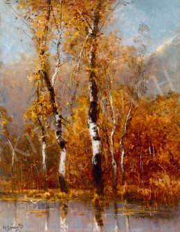 K. Spányi, Béla - Birch Trees (Autumn)