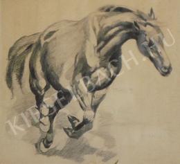 Viski János - Vágtató ló
