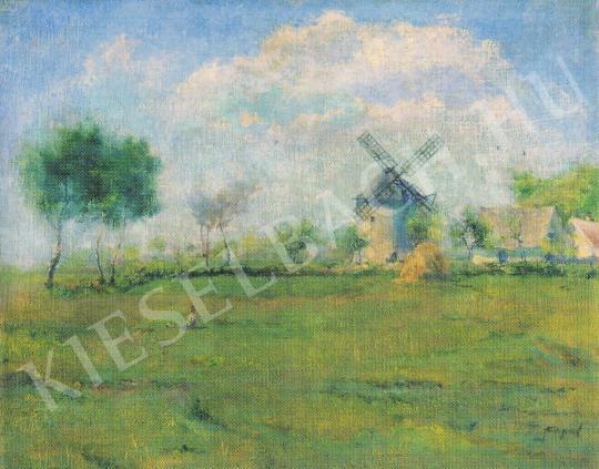 Csupor László - Kecskeméti táj festménye