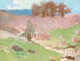 Vaszary János - Dombos táj (1907 körül)