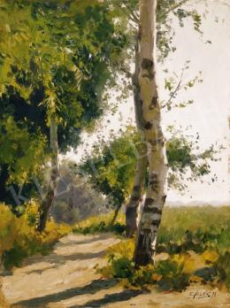 Edvi Illés, Aladár - Birch trees in Sunshine