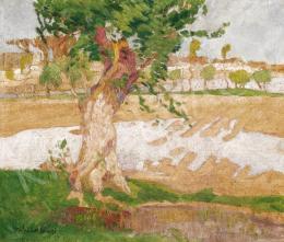 Mihalik Dániel - Szolnoki folyópart