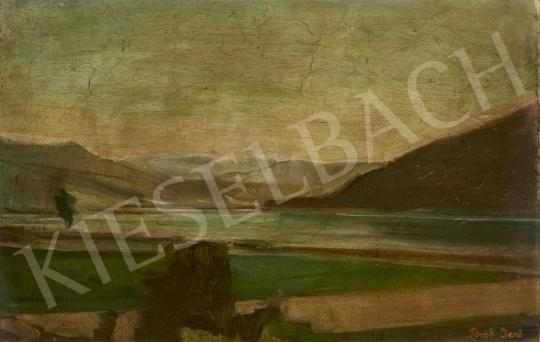 Eladó Török Jenő - Dunai táj festménye