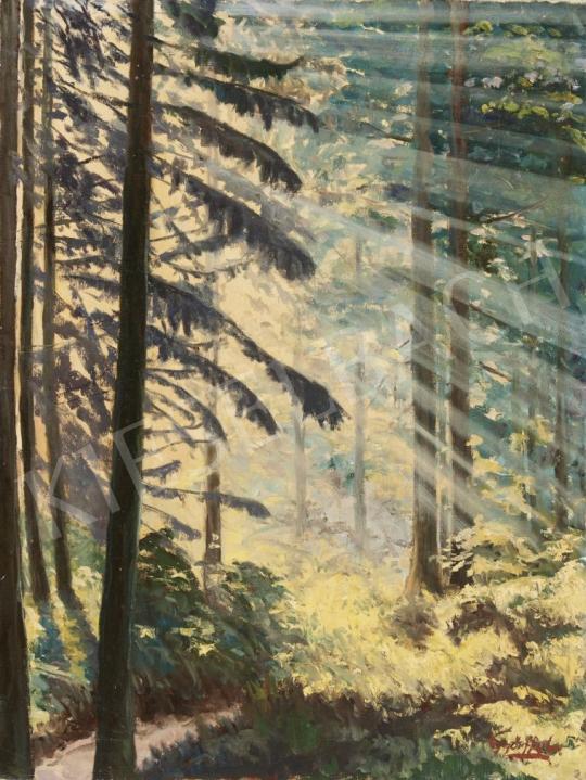 Eladó Győrffy L. jelzéssel - Fények az erdőben festménye