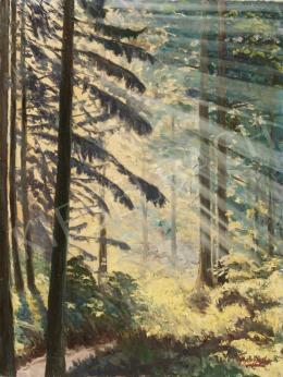 Győrffy L. jelzéssel - Fények az erdőben