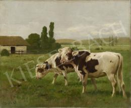 Heyer, Artur, - Cows