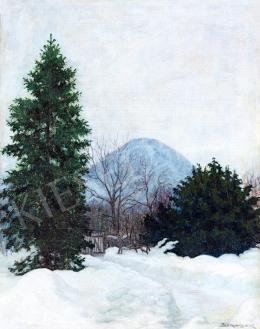Börtsök Samu - Tél a nagybányai Kereszthegyen