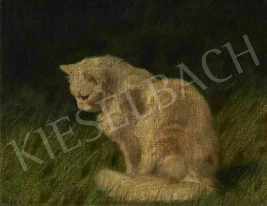 For sale Heyer, Artur, - Cat 's painting
