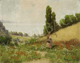 Neogrády, László - On a Meadow with Red Poppies