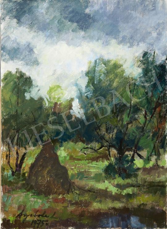 Eladó Agricola Lídia - Nagybányai táj festménye