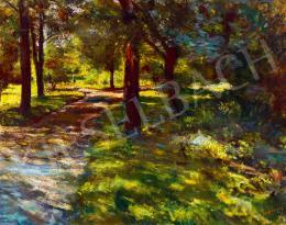 Hatvany Ferenc - Napsütötte park