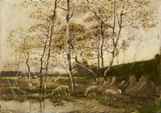 For sale  Mesterházy, Kálmán - Sheep 's painting