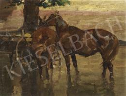 Juszkó Béla - Szekérből kifogott lovak