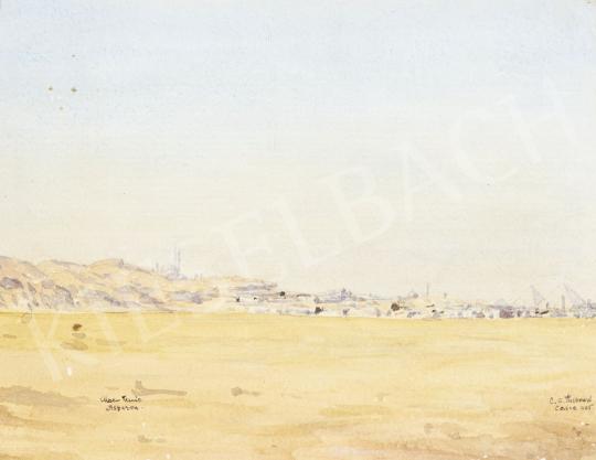 Eladó  Friboud jelzéssel - Kairó madártávlatból, 1905 festménye