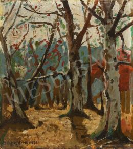 Schneider N. jelzéssel - Napsütéses őszi erdő, 1926