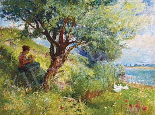 Ujváry Ignác - Pipacsos domboldalon, 1910-es évek | 54. Téli aukció aukció / 19 tétel