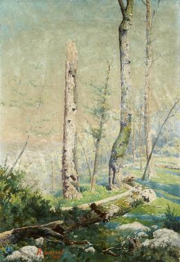Ismeretlen festő A. Lammel jelzéssel - Napfényes erdő, 1929