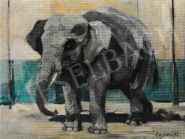 Kieselbach Géza - Elefánt - Hagenbecki Cirkusz, 1924