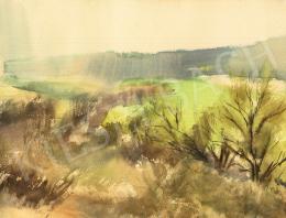 Pálfi, Balázs - Landscape of Töreki