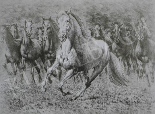 Eladó Ismeretlen festő - Szürke ló festménye