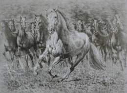 Unknown painter - Grey Horse