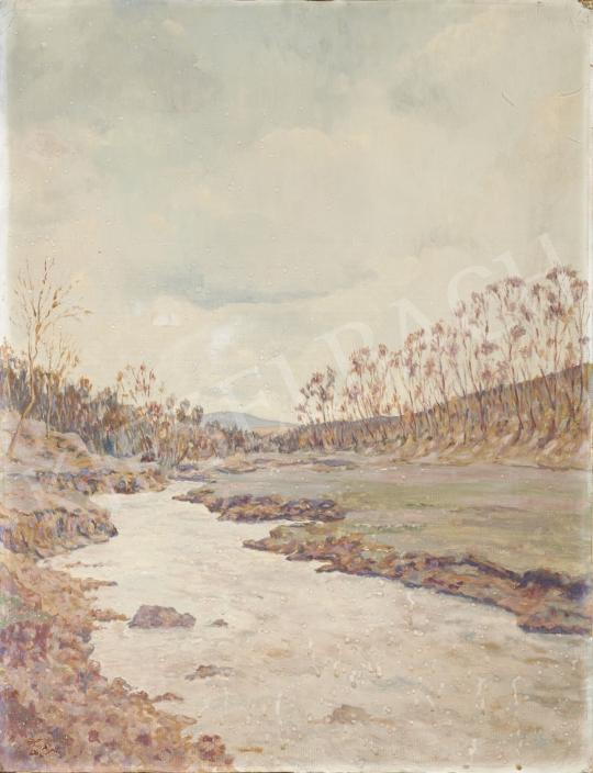 Hoppe István - Folyópart festménye