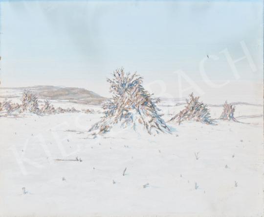 Eladó  Hoppe István - Téli táj festménye