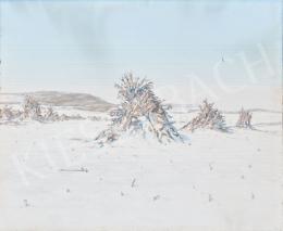 Hoppe István - Téli táj