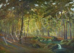 Kardos Gábor - Napfényes erdő patakkal