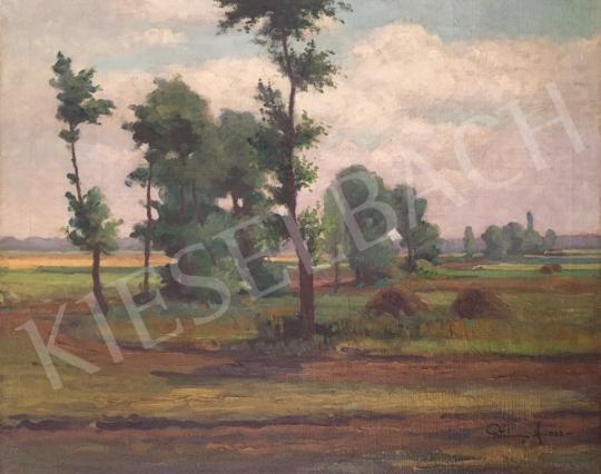 Eladó  Petrányi Miklós - Tájkép boglyákkal, 1923 festménye