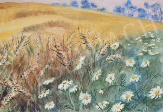 For sale Lukács, Ágnes - Daisies near the Cornfield, 1987 's painting