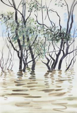 Lukács, Ágnes - Danube Floodplain, 1985