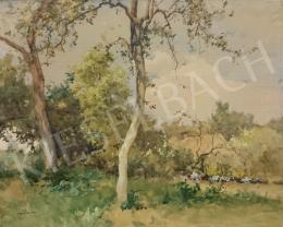 Neogrády, Antal - Garden View