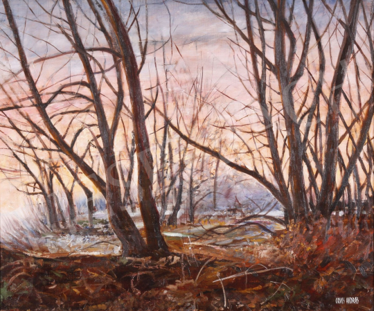 For sale Orvos, András - Sunset 's painting