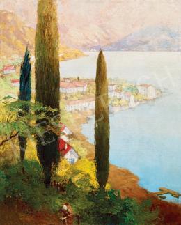 Háry Gyula - Lugano