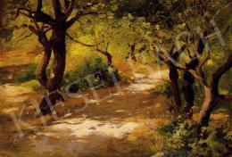 Edvi Illés, Aladár - Forest path