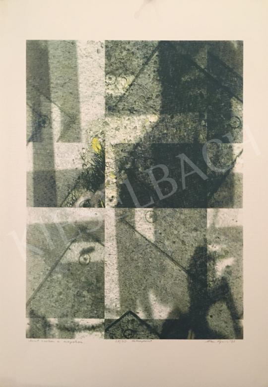 Eladó Haász Ágnes - Mint azokon a napokon…, 2001 festménye