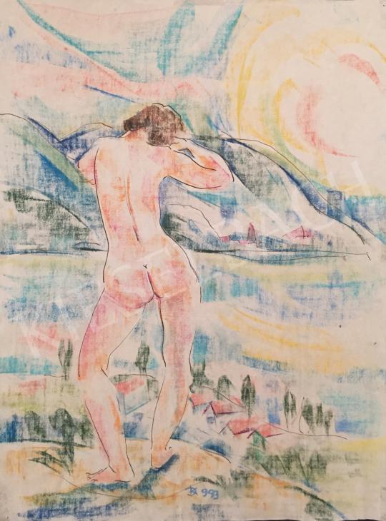 Dániel Kornél Miklós - Háttal álló női akt tájban, 1993 festménye